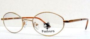 FOXBORO FX 008